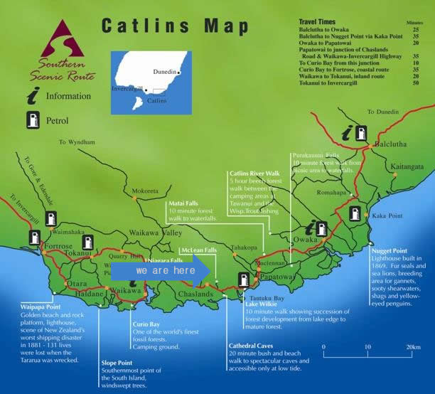 catlins on the southern scenic route